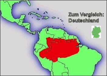 verbindung orinoco und amazonas